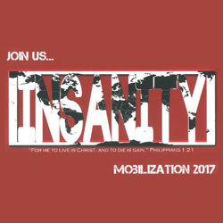 Insanity Mobilization